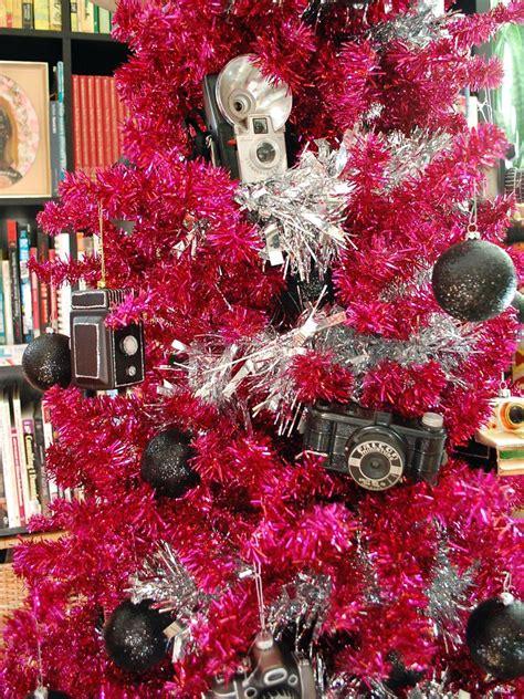 Fraser Fir Christmas Trees Kent by 100 Fraser Fir Christmas Trees Kent Wisconsin Fir
