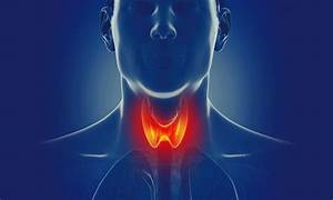 What Happens When Your Thyroid Doesn U2019t Work Correctly