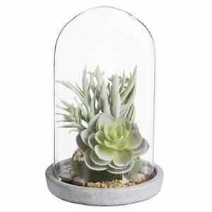 Cloche En Verre Maison Du Monde : plantes grasses artificielles sous cloche en verre ~ Melissatoandfro.com Idées de Décoration