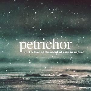 Petrichor | Quo... Petrichor