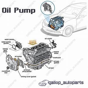 Oil Pump Holden Commodore Vz Ve Vf Alloytec Sidi V6 3 6l