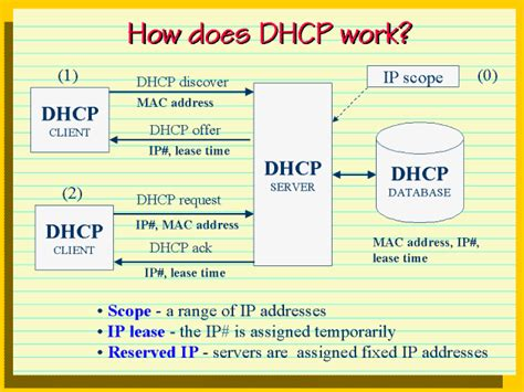 How Does Dhcp Work?