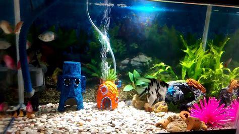 spongebob aquarium decoratie aquascape bikini bottom mini aquarium youtube