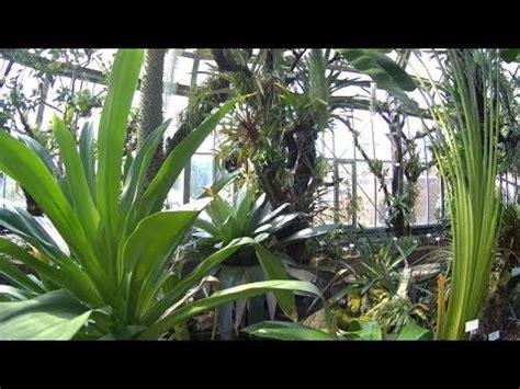 Botanischer Garten Berlin Veranstaltungen 2017 by Tropische Pflanzen Botanischer Garten Berlin Mai 2017