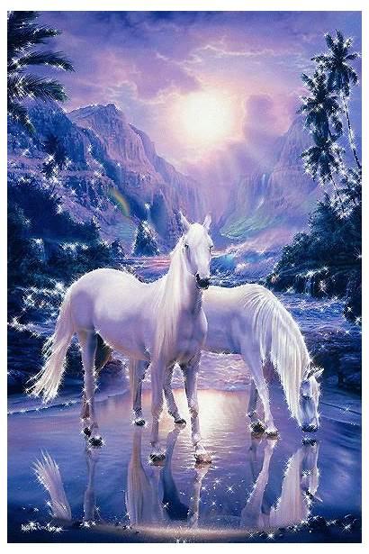 Fantasy Horses Horse Myniceprofile Animated Gifs Imagenes