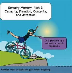 Sensory Memory, Part 1 by abellersen | Pixton #Comics