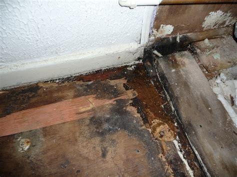 Bathroom Shower Floor Repair Bathroom Floor Repair Water Damage Flooring In