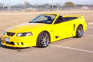 childs 2004 Saleen Mustang Specs, Photos, Modification Info at CarDomain