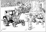 Malvorlagen Farma Fazenda Fattoria Hooi Animierte Gify Bewegende Animaties Kolorowanki Kolorowanka Malvorlagen1001 Dibujos1001 Kleurplatenwereld Obrazki Animate Outros sketch template