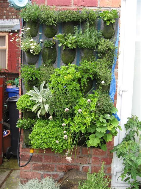 Vertical Garden by Vertical Garden Chorlton Open Gardens