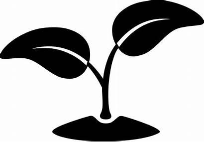 Environment Icon Svg Physical Clipart Environmental Transparent