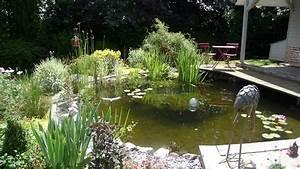 beautiful bassin d ornement jardin 10 bassin d ornement With bassin d ornement jardin
