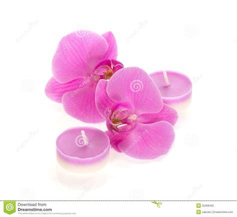candele aromatiche orchidee e candele aromatiche fotografia stock immagine