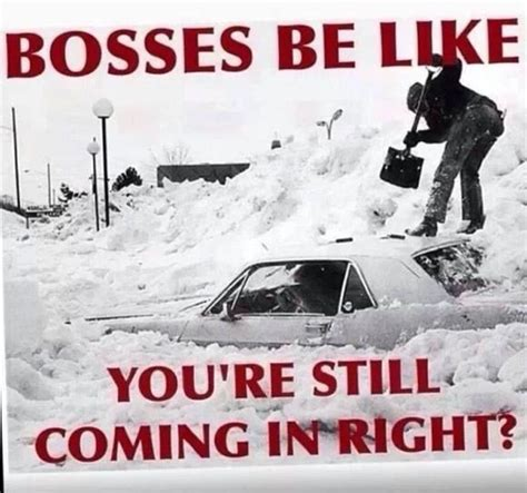 Bosses Be Like Meme - 17 best images about meme on pinterest snow meme cute cats and funny pix