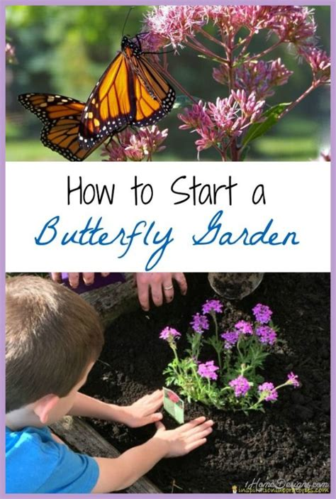 butterfly garden me 10 butterfly garden design ideas 1homedesigns