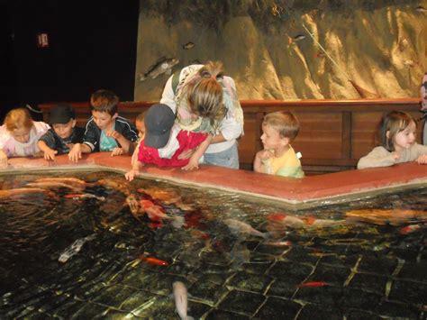 visite parc des mini ch 226 teaux et aquarium de touraine centre de loisirs de d 233 ols
