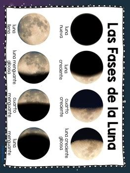 phases   moon activities  spanish     star