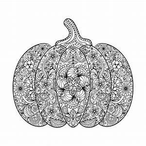Dessin Citrouille Facile : halloween complexe citrouille avec fleurs et feuilles halloween coloriages difficiles pour ~ Melissatoandfro.com Idées de Décoration