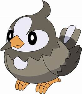 Starly Pokemon Evolves Images | Pokemon Images