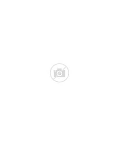 Pintail Stogie Havana Longboard