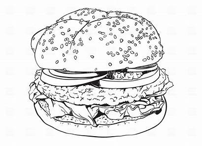 Hamburger Vector Clipart Outline Illustration Coloring Silhouette