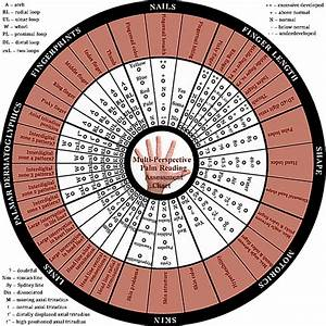 Palm Reading Chart Meaning