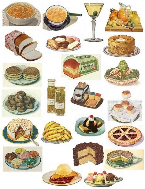illustration cuisine vintage food illustrations retro food groups