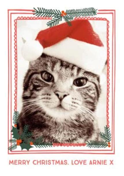 merry christmas from the cat photo upload t shirt moonpig