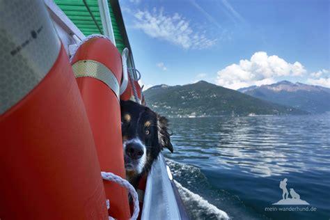 lago maggiore mit hund wandertour mit hund routenvorschl 228 ge wandern mit hund