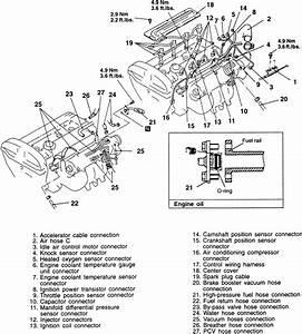 2006 Kium Sorento Wiring Diagram