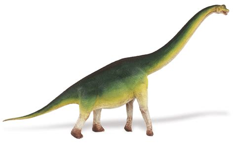 How To Cook A Dinosaur And The Difference Between Red And