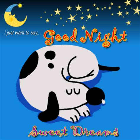 cute good night card     good night