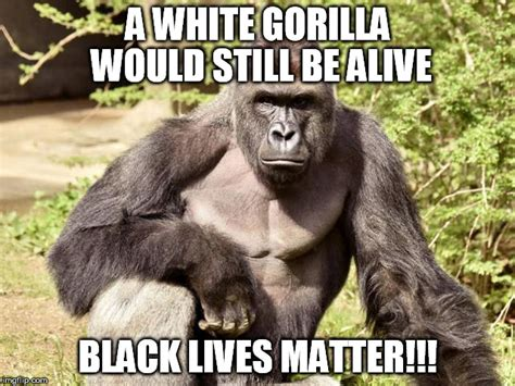 Black Lives Matter Memes - what matt r s