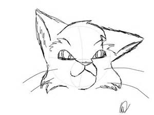warrior cat drawings warrior cat sketch slimber drawing and painting