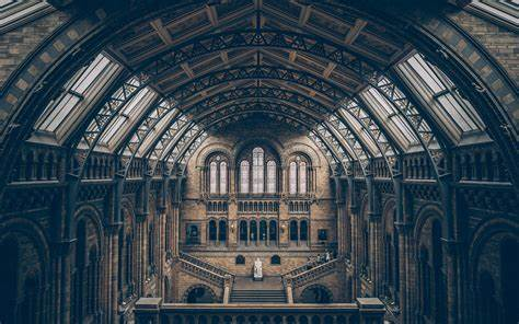 Daily Wallpaper: London Natural History Museum | I Like To Waste My Time