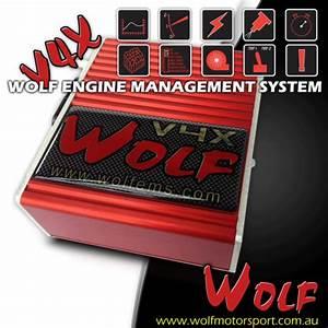 Diagram  D2 55 Workshop Manual Wiring Diagram Full