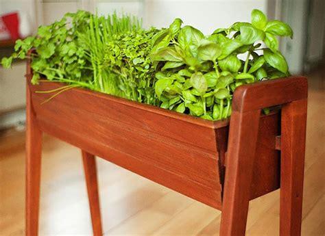jardiniere cuisine mini jardinières et pots d intérieur aux herbes aromatiques