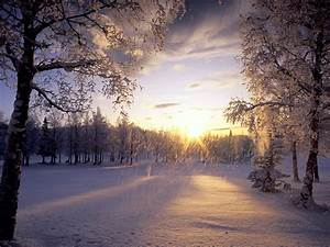 Beautiful, Christmas, Pictures, And, Graphics, Free, To, Enter, Snowy, Wonderland, Leawo, Official, Blog
