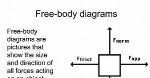 Free-body Diagrams Printout