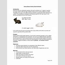 Darwin Natural Selection Worksheet  Classroom  Natural Selection, Worksheets, Darwin