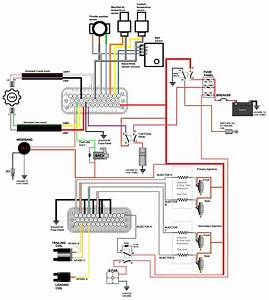 Ms3 Pro Ultimate Wiring Diagram