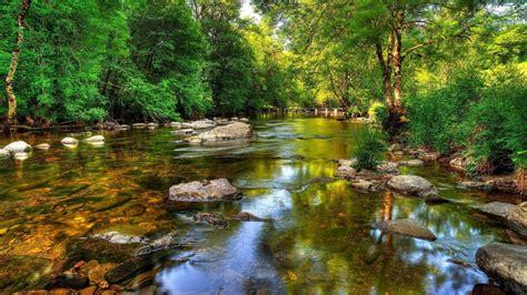 Crystal Clear Riverrockcoast With Green Trees Bridge