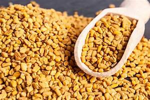 Fenugreek - A Herb From The Antiquity  Benefits  Side Effects  And History