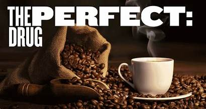 Drug Coffee Caffeine Perfect Addicts Musings Thoughts