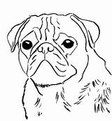 Pug Coloring Printable Getcolorings sketch template