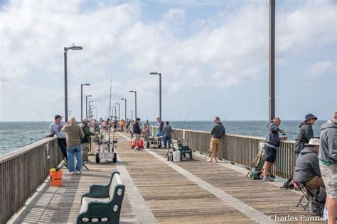 Pier Education by Stay And Play In Gulf State Park