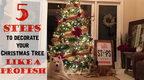 steps  decorating  christmas tree   professional