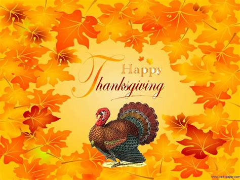 Happy Thanksgiving Wallpaper Hd by Hd Wallpapers Happy Thanksgiving Turkey Wallpaper 1440