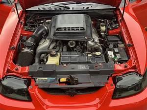 FS: 2003 Mach 1 with 03 Cobra engine/tranny swap | SVTPerformance.com
