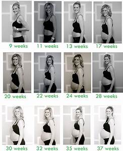 Pregnancy Belly Progression Week By Week ...